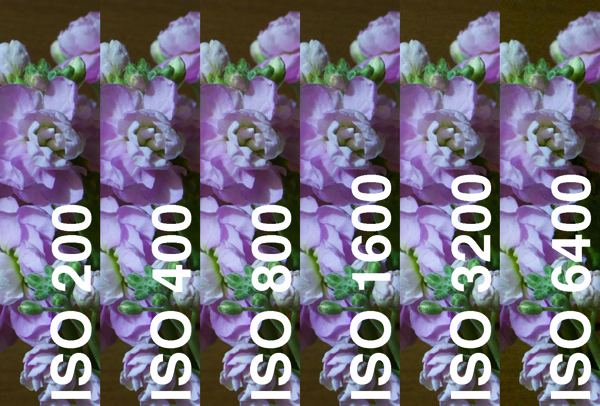 X100S ISO TEST